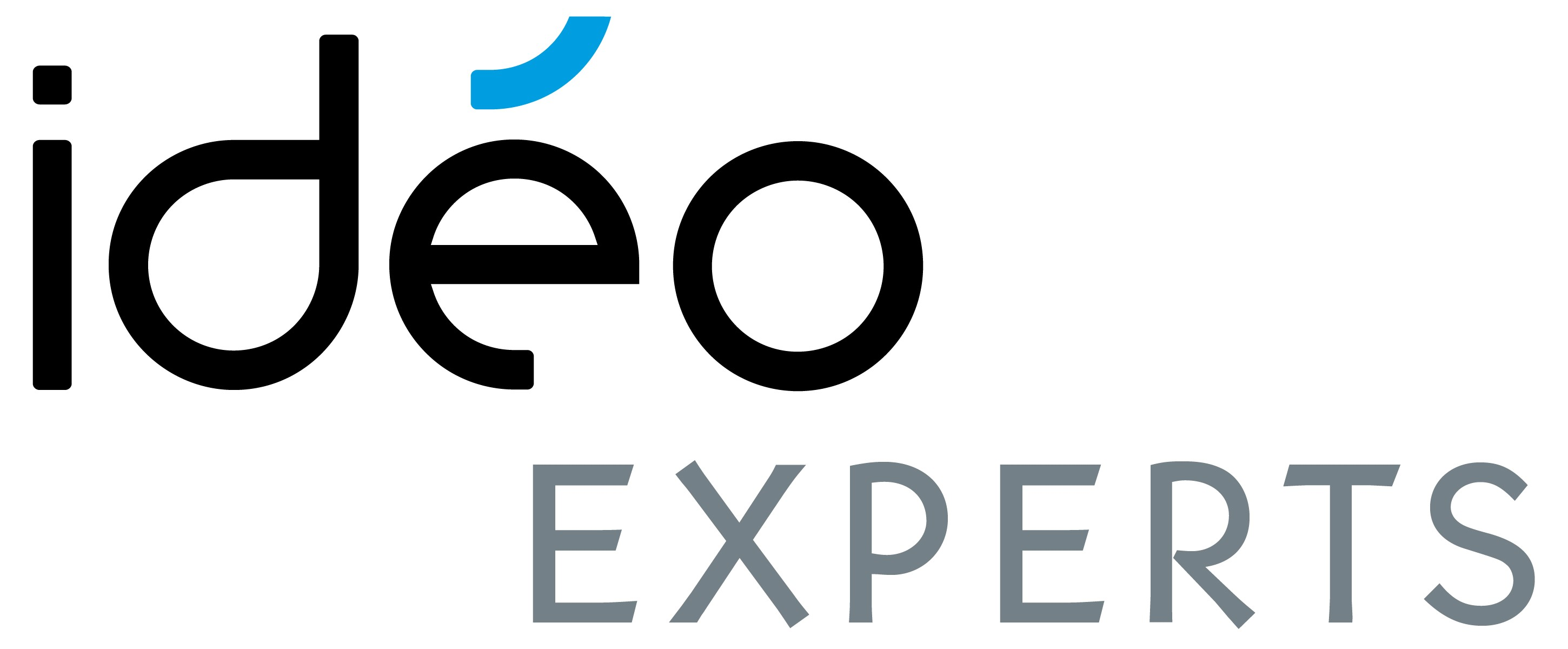 IDEO EXPERTS