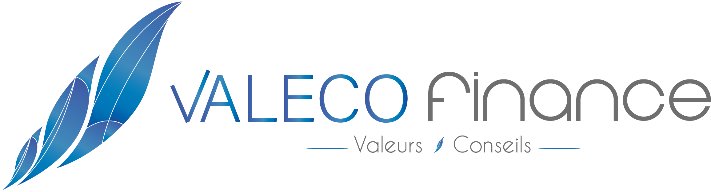 VALECO FINANCE