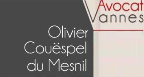 Olivier COUËSPEL du Mesnil – AVOCAT